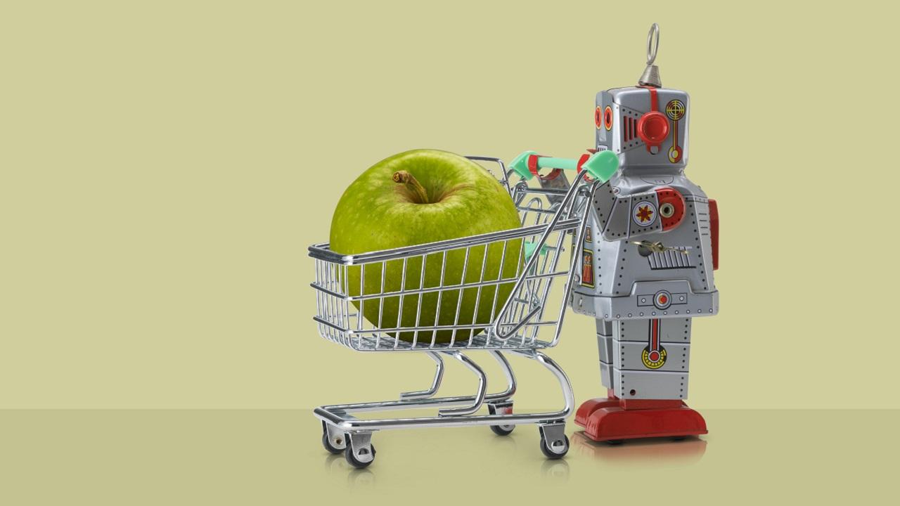 Robot Assistant Fails Shoppers, Blows Cush Gig