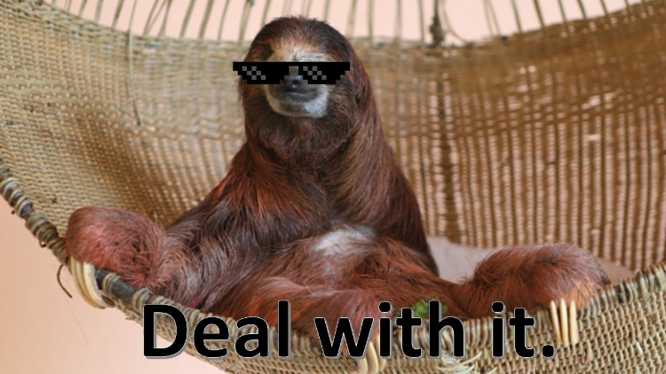 This Day In Internet History - Feb. 12, 2011: Deal With It
