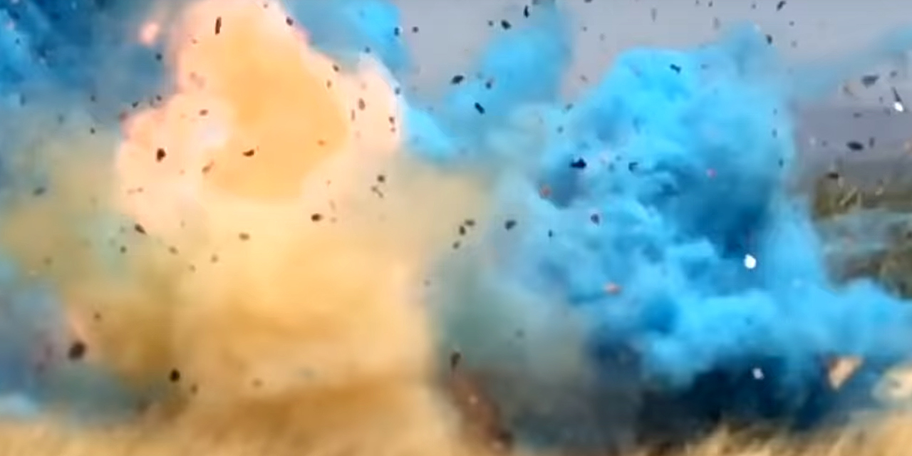 Gender Reveal Party Causes Wildfire and $8 Million in Damages