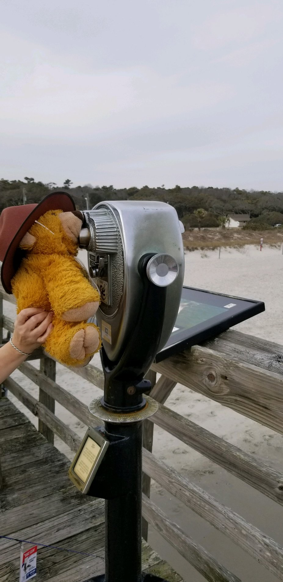 Bear Binoculars