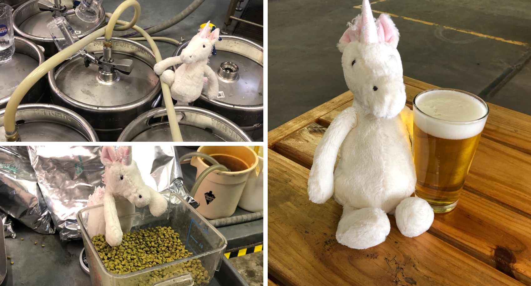 Brewery Puts Lost Unicorn Stuffy to Work in Hopes of Getting Him Home