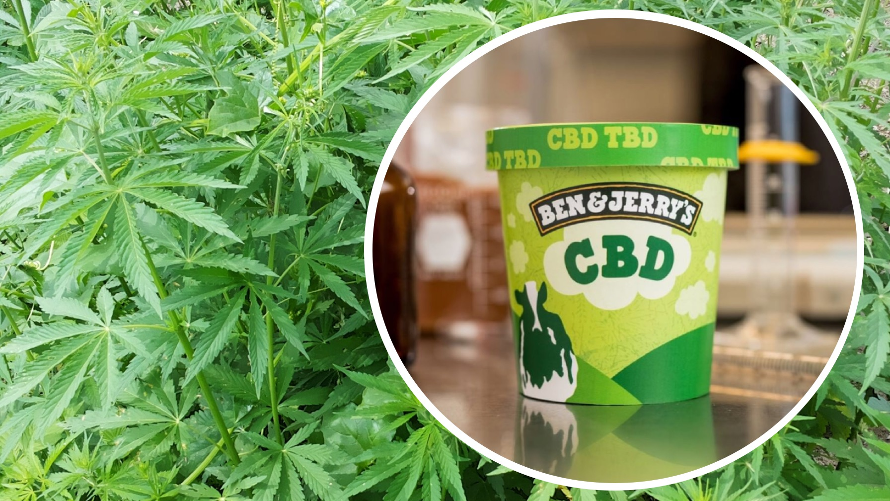 Ben & Jerry's Is Teasing Us With CBD Ice Cream