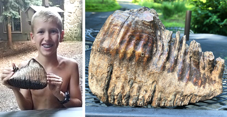 Jackson Hepner with Woolly Mammoth Tooth