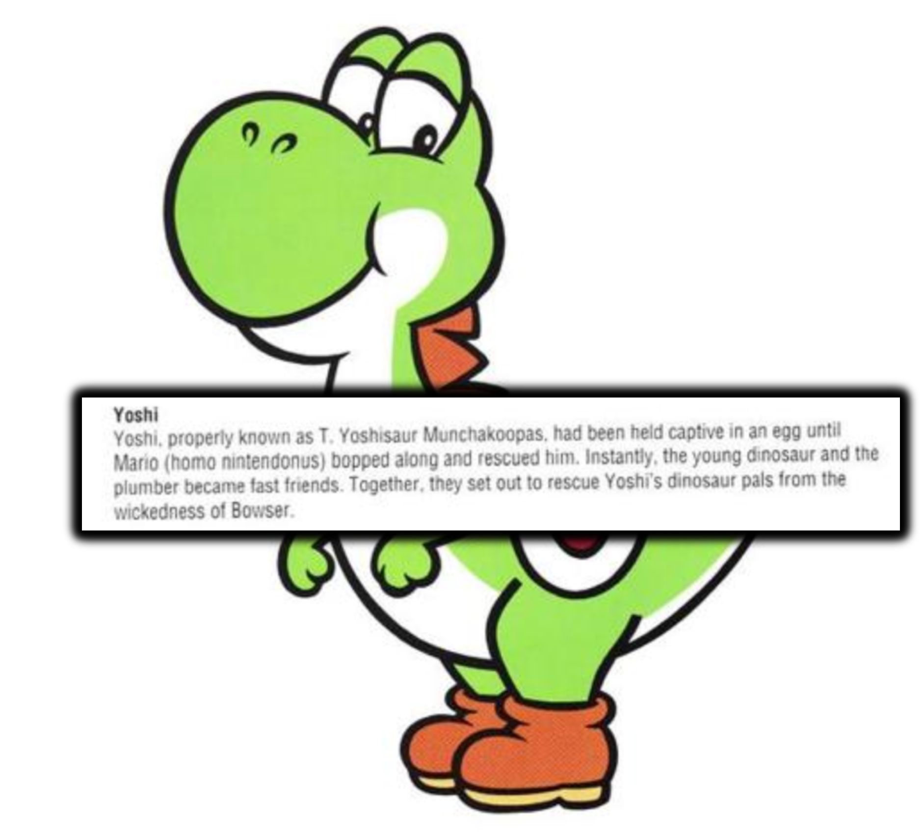 15 Crazy Facts You Don T Know About Super Mario