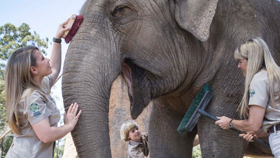 Terri, Bindi and Robert Irwin with Elephant