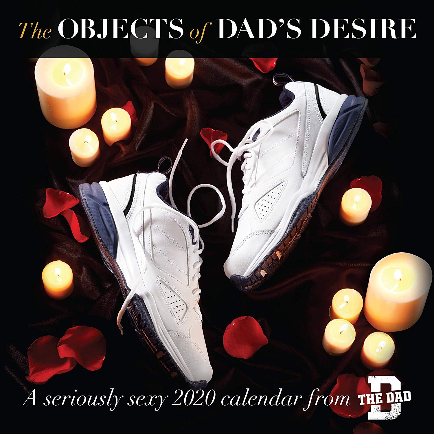 Objects of Dad's Desire 2020 Wall Calendar