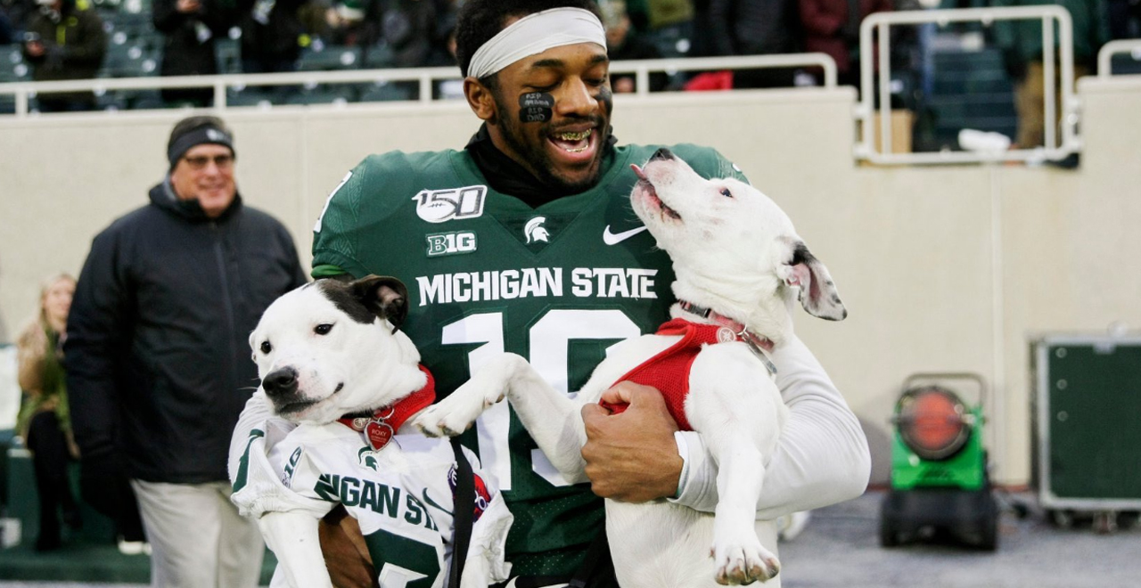 Josh Butler Takes the Field with Dogs