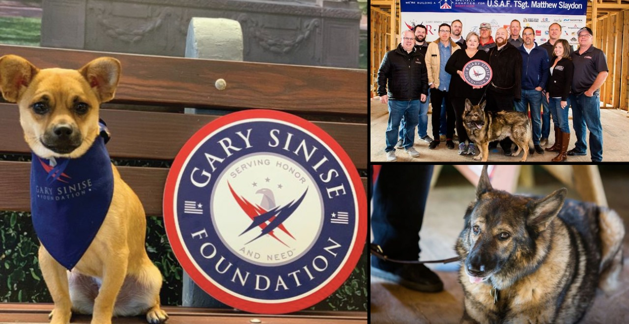 "Gary Sinise's ""Vets for Valor"" Program Provides Medical Care to Canine Heroes"