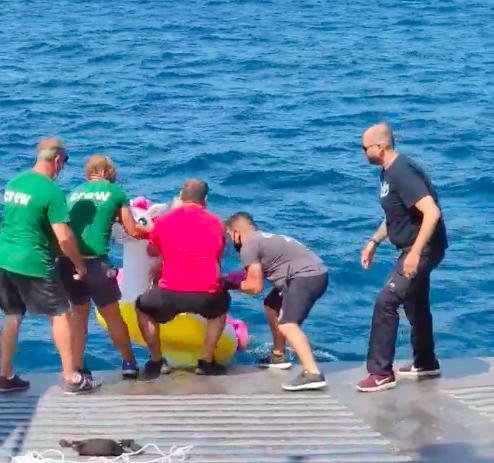 Unicorn Ferry Rescue