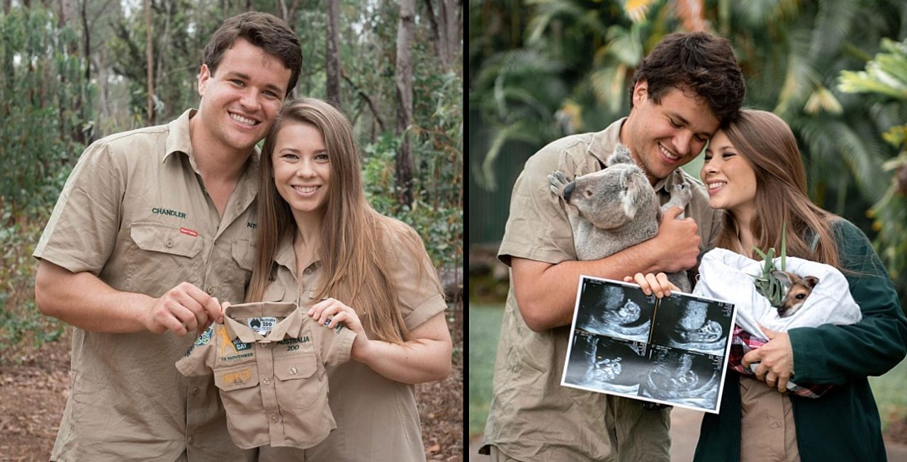 Bindi Irwin Pregnancy Update