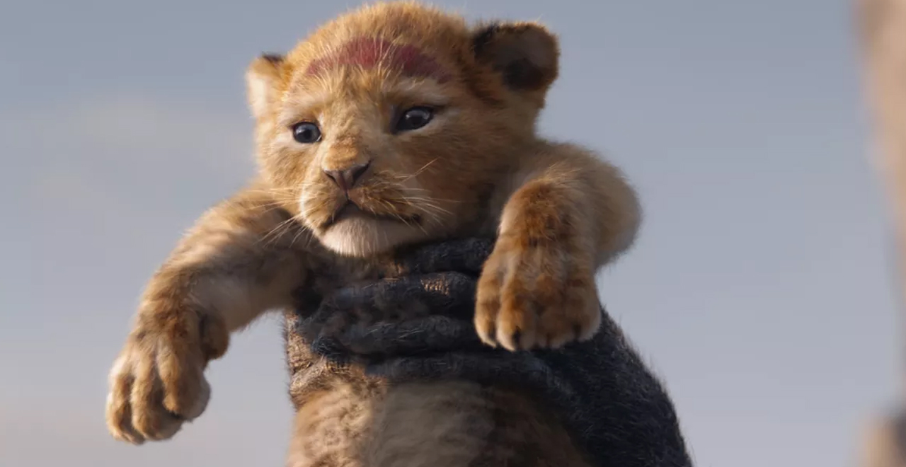 Lion King Live-Action Sequel