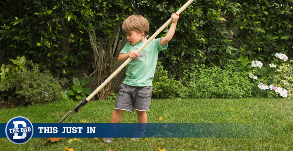 boy raking lawn