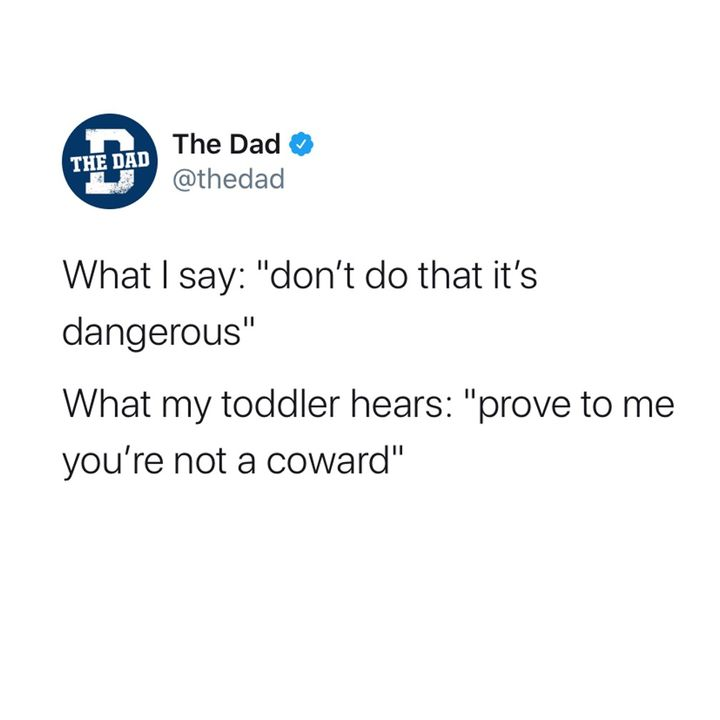 What I say: Don't do that it's dangerous. What toddler hears: Prove to me you're not a coward.
