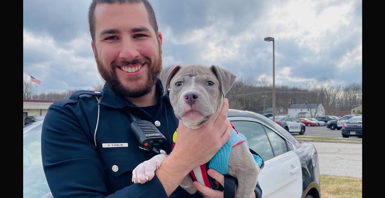 Cop Adopt