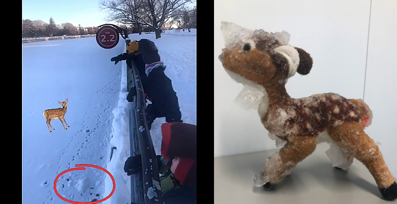 Stuffed deer rescued from frozen canal