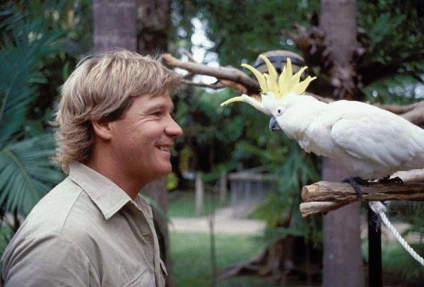 Steve Irwin and a parrot