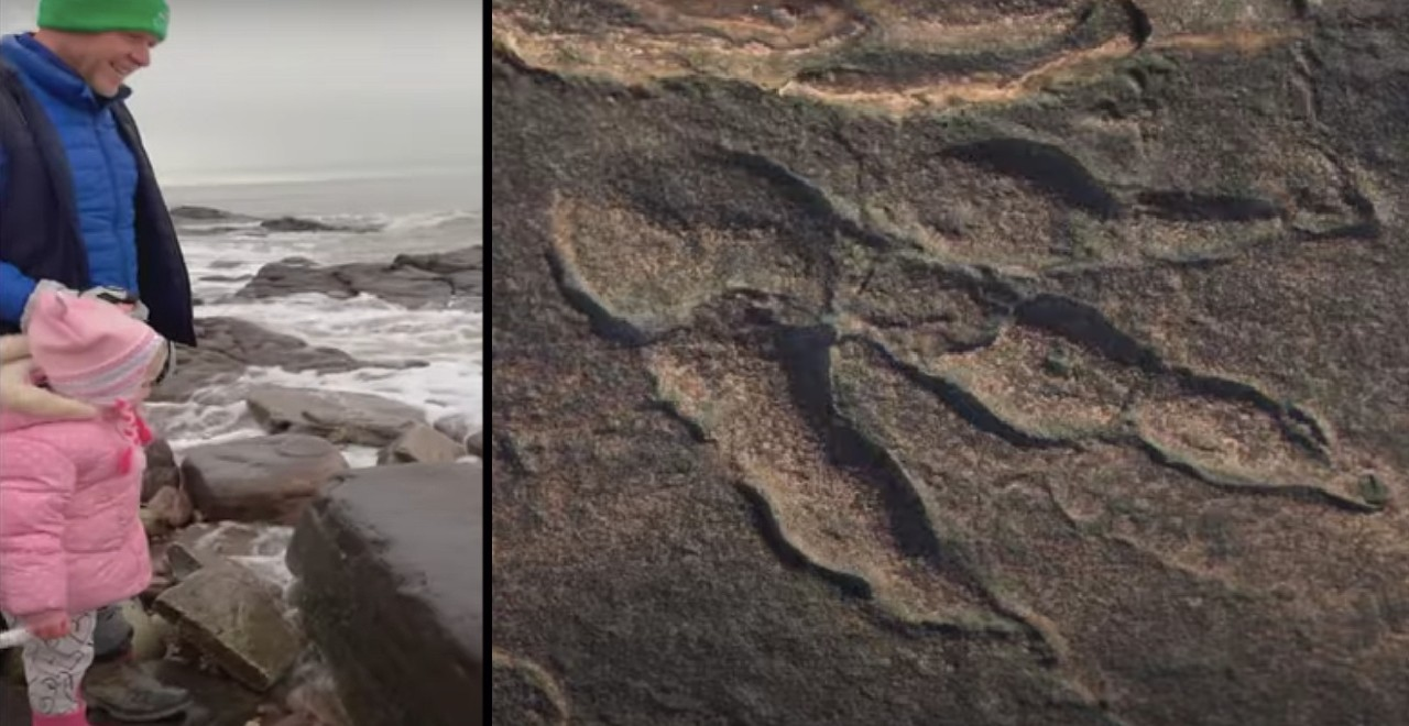 4-year-old discovers 220 million year old dinosaur footprint