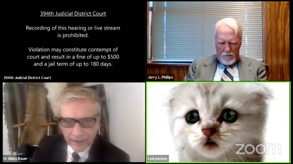 Lawyer Cat Filter