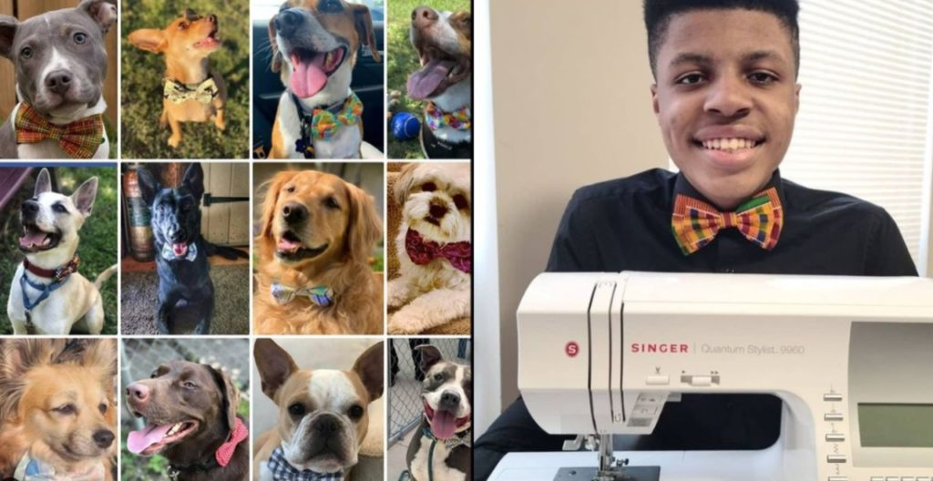 Teen sews bow ties for shelter animals