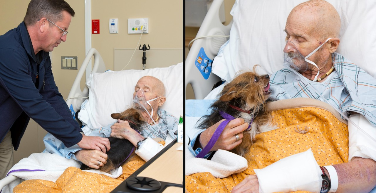 Dying veteran sees beloved dog one last time