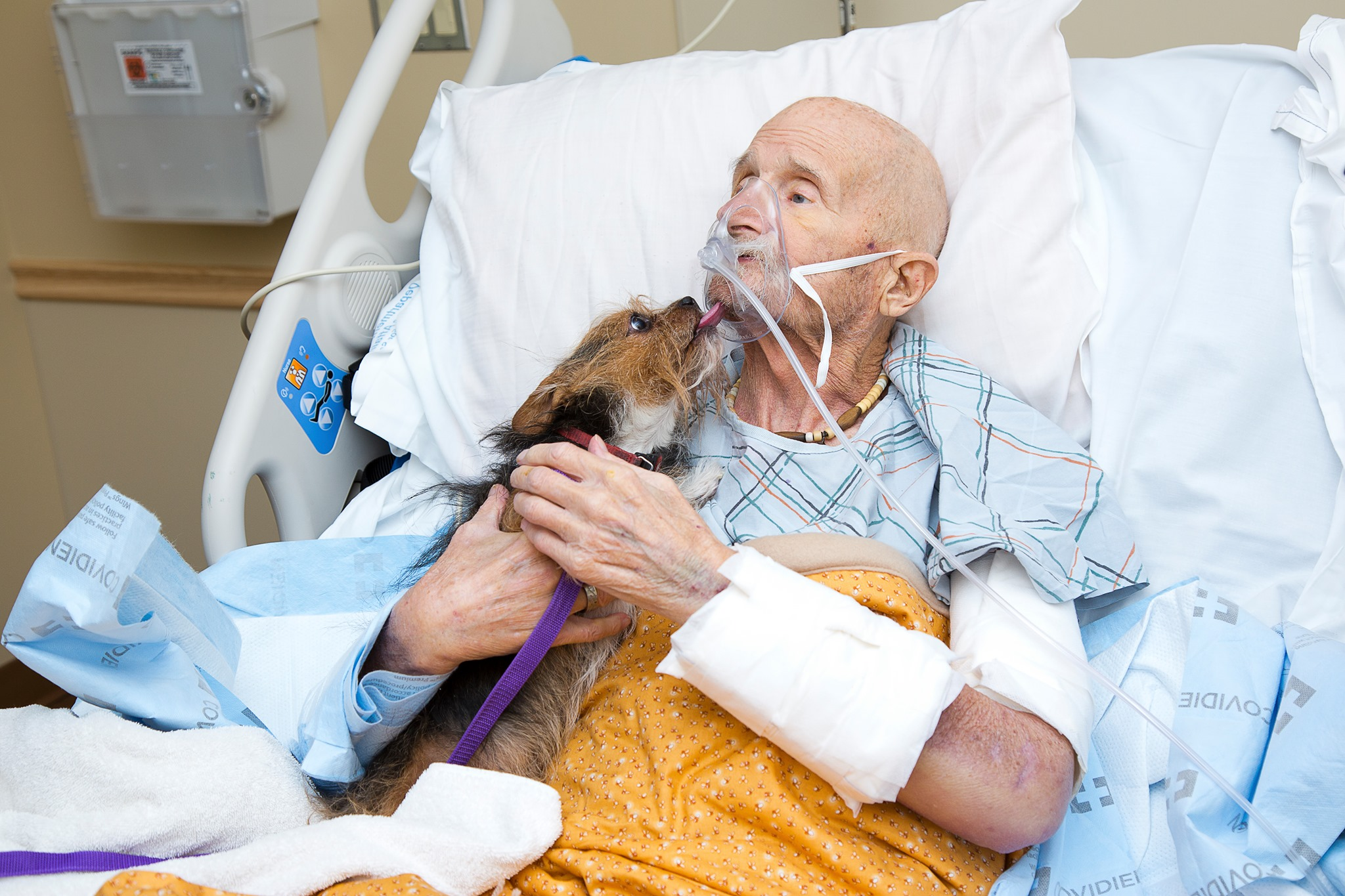 Veteran in hospice says goodbye to beloved dog