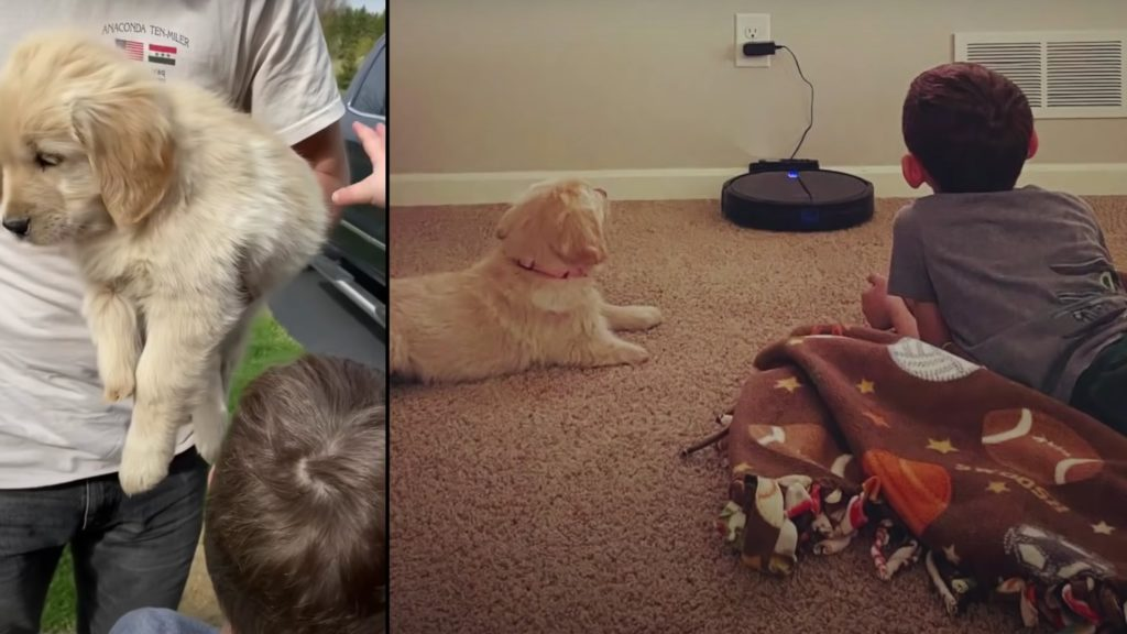 Boy with prosthetic leg adopts puppy with three paws