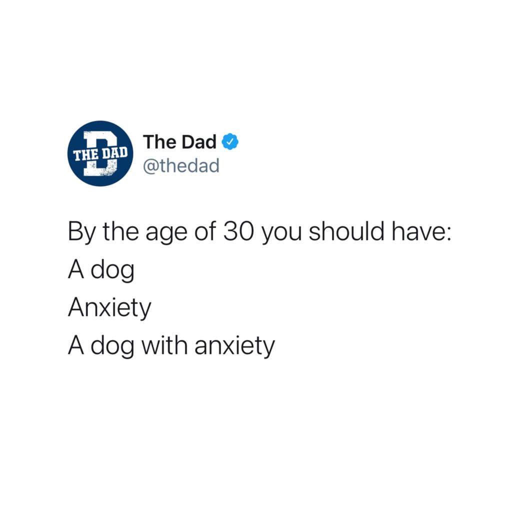 By the age of 30 you should have: A dog, Anxiety, A dog with anxiety. Tweet, aging, funny