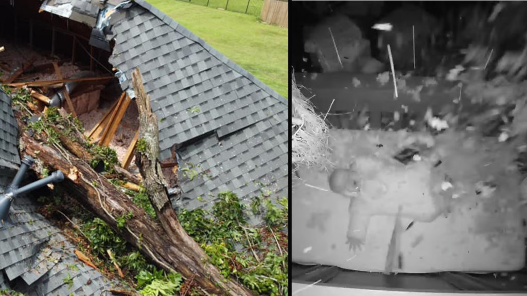 Baby Spared from tree that crushes home