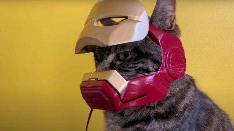 Iron Man Cat Helmet
