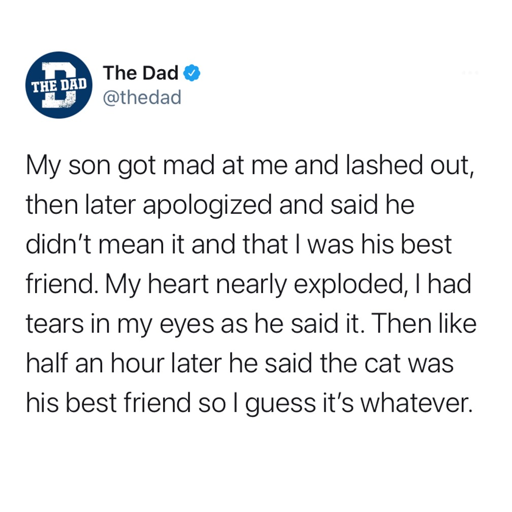 My son got mat at me and lashed out, then later apologized and said he didn't mean it and that I was his best friend. My heart nearly exploded, I had tears in my eyes as he said it. Then like half an hour later he said the cat was his best friend so I guess it's whatever. Tweet, heartbreak, animals