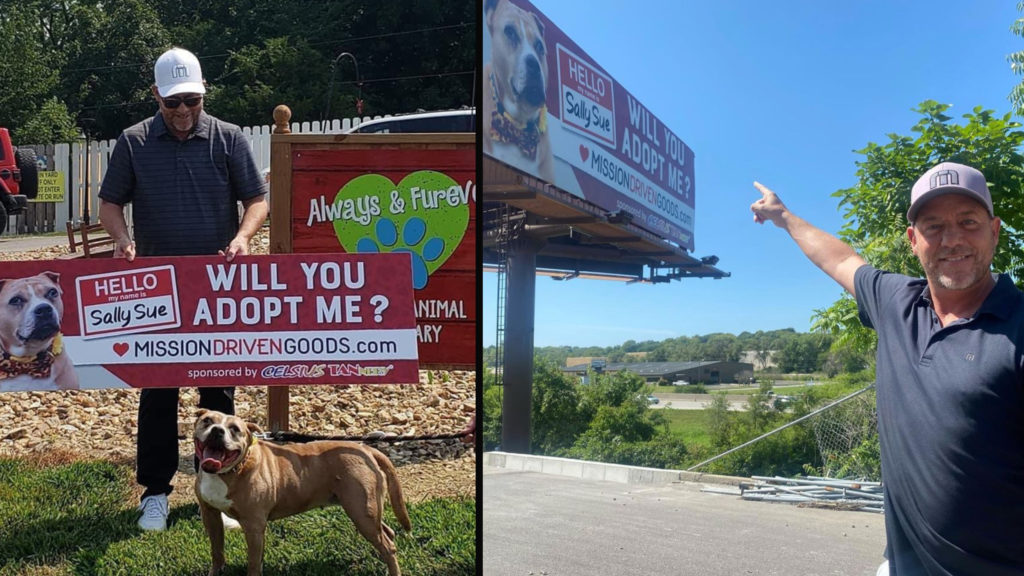 Billboard Dog