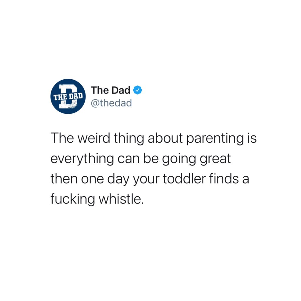 The weird thing about parenting is everything can be going great then one day your toddler finds a fucking whistle. Tweet, entertainment, pain